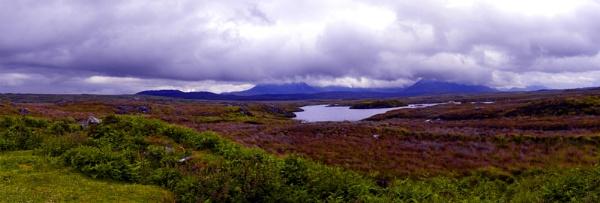 The Bog Road by FotoDen