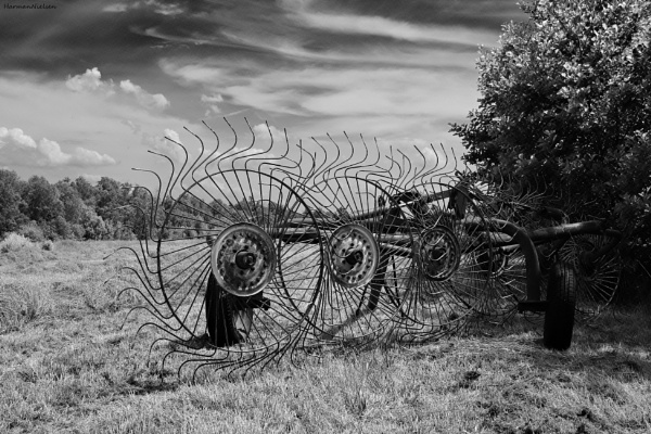 Dutch meadow with haying machine by HarmanNielsen