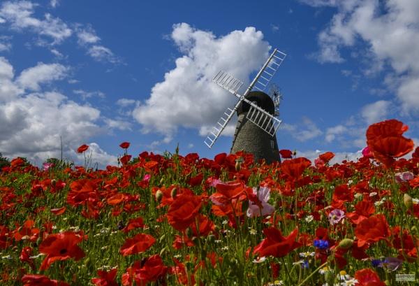 Whitburn Windmill by LighthousePhotography