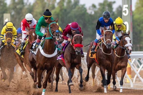Horse racing in Saudi Arabia by WorldInFocus