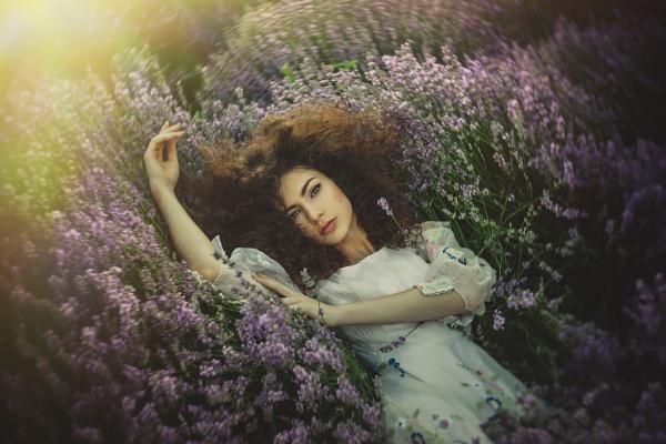 lavender in a dream by cristinavenedict