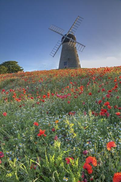 Whitburn Mill by stevenb
