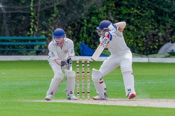 Cricket by bobbyl