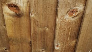 Urban Woodies....