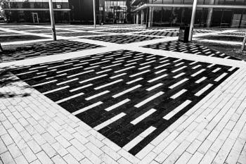 Black & White On Ground