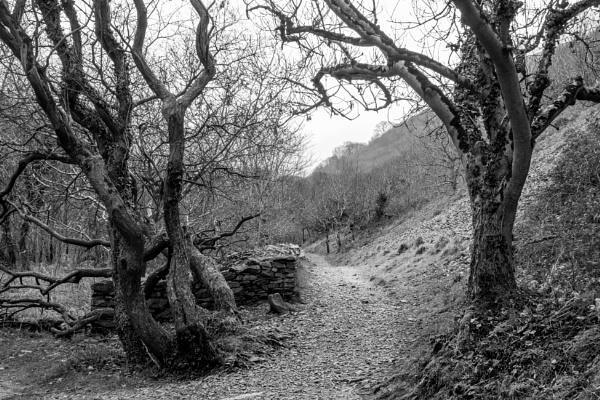 Heddon Valley by bwlchmawr