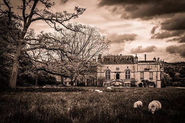 Lacock Abbey by AllistairK