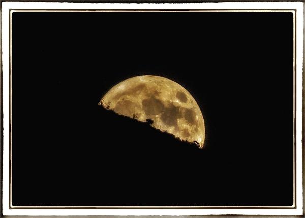 Yellow Moon rising by nklakor