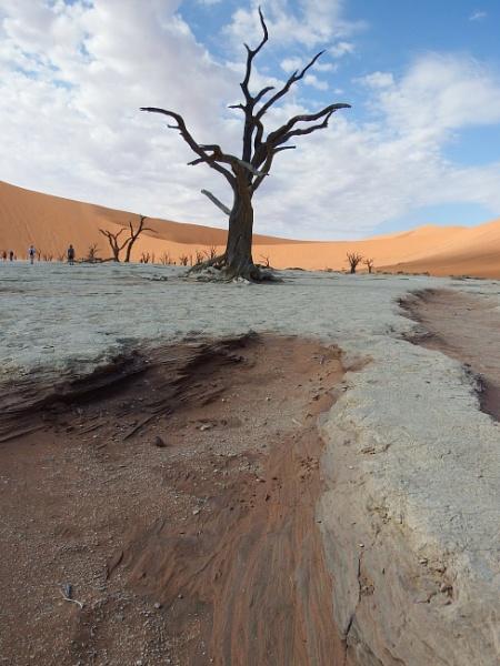 Kalahari by Nigeltraveller
