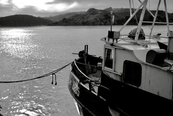 Boat at the Raglan Wharf by heyitshenry
