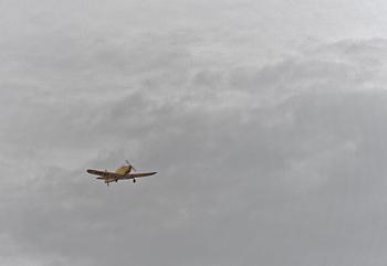 From Flyfest with De Havilland Canada DHC-1B-2-S5 Chipmunk  # 01