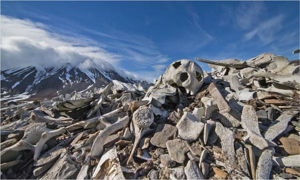 Sins of Svalbard by mjparmy