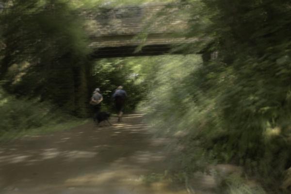 Walking the Dog by davereet