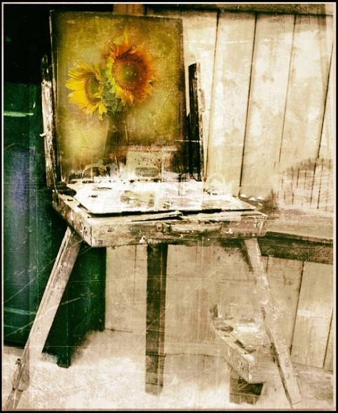 sunflower by lostrita