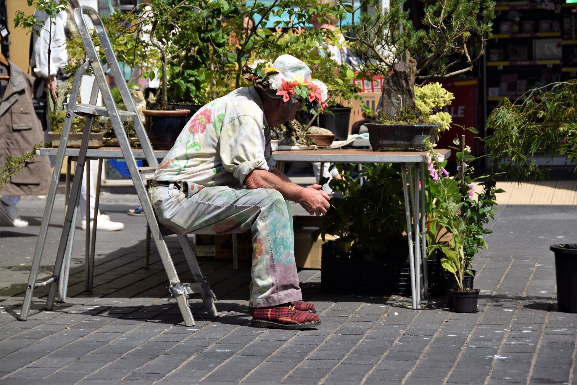Flower Salesman