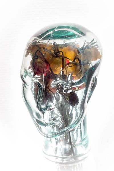 Flowers in your Mind by JackAllTog