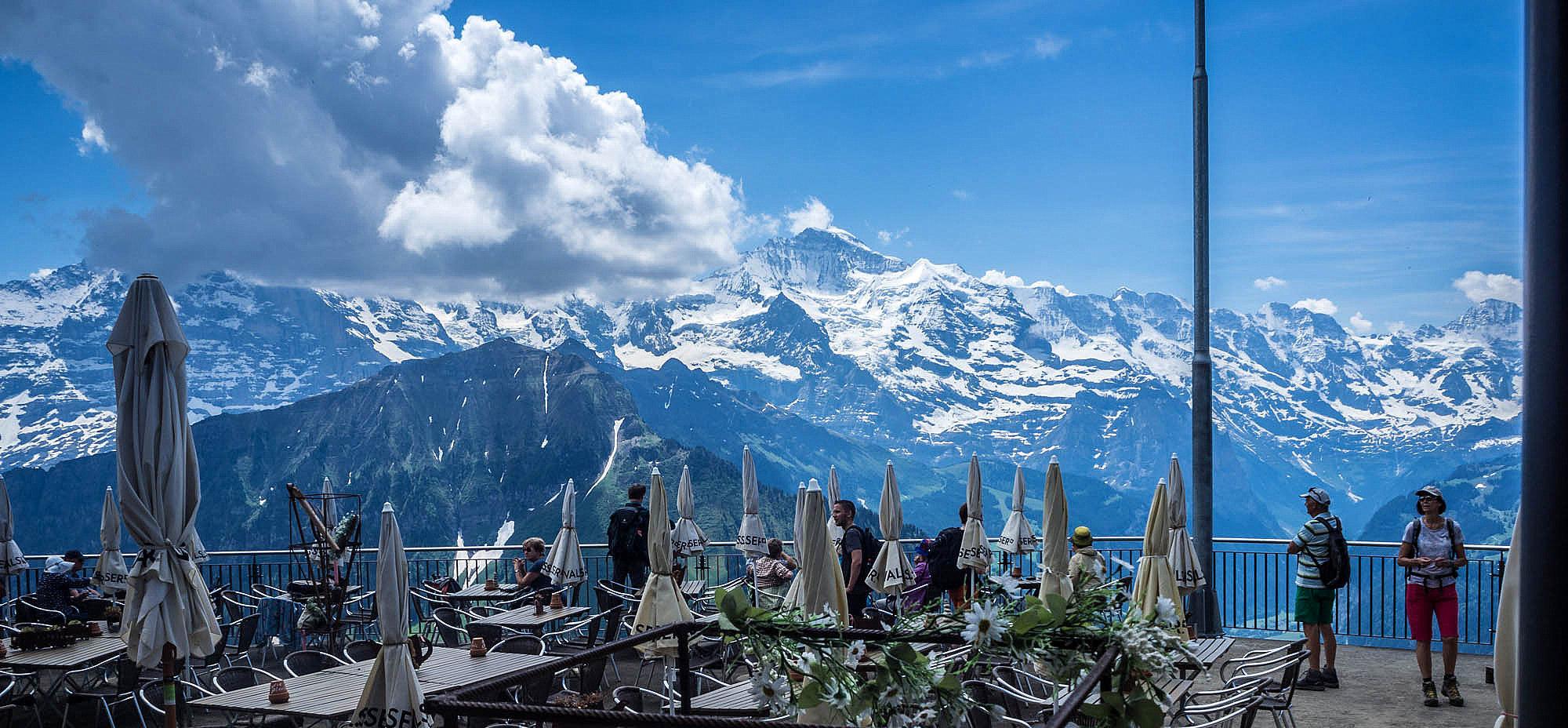 Mountain Views 5