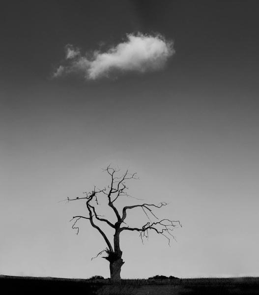 Loan cloud by Barbicans