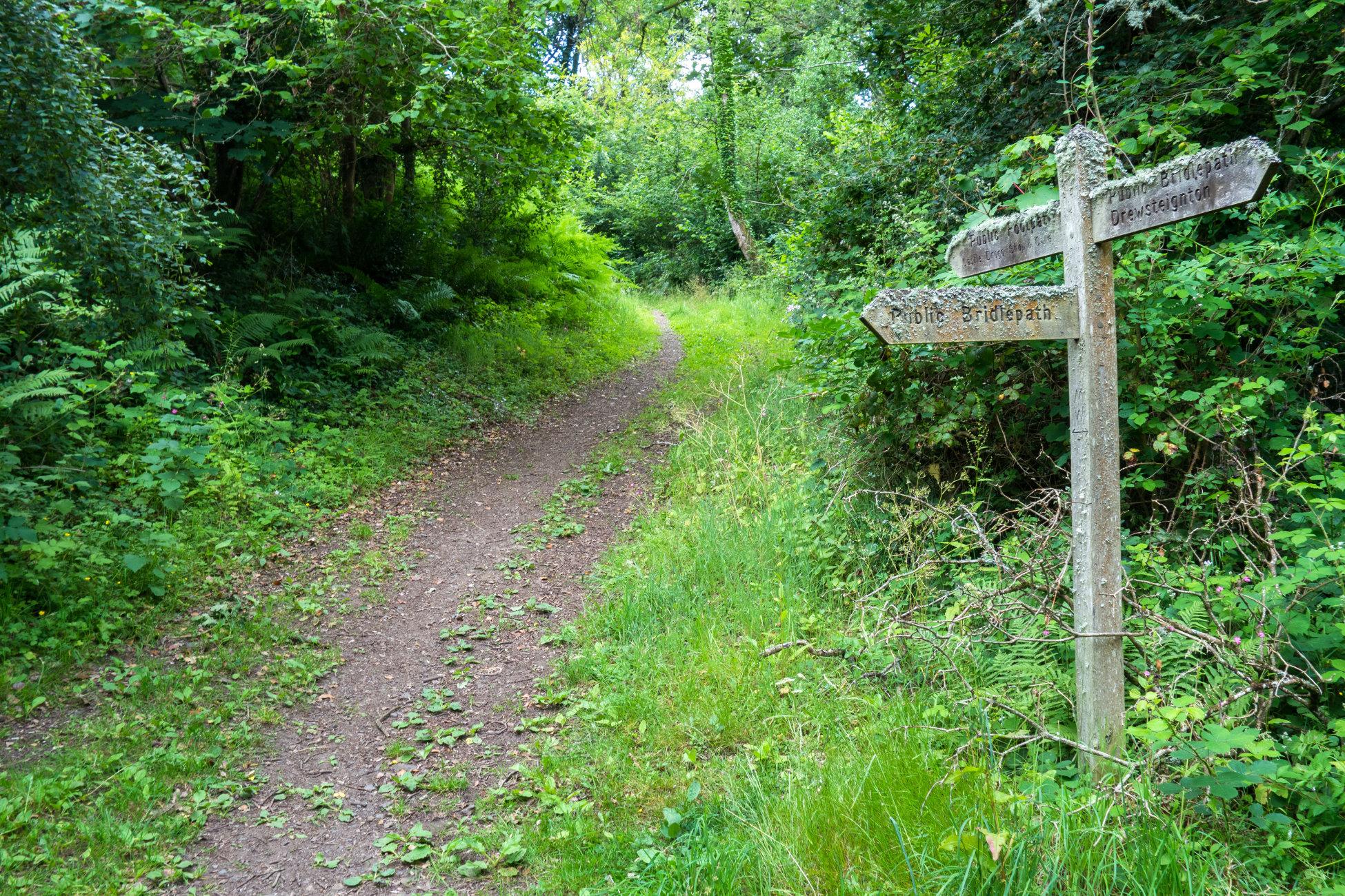 Green Lane on Dartmoor