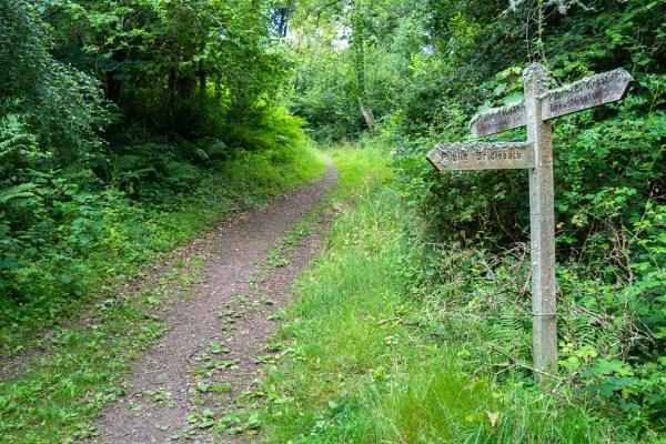 Green Lane on Dartmoor by bwlchmawr