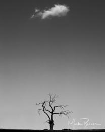 Loan cloud