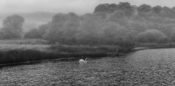 Murky morning by BillRookery