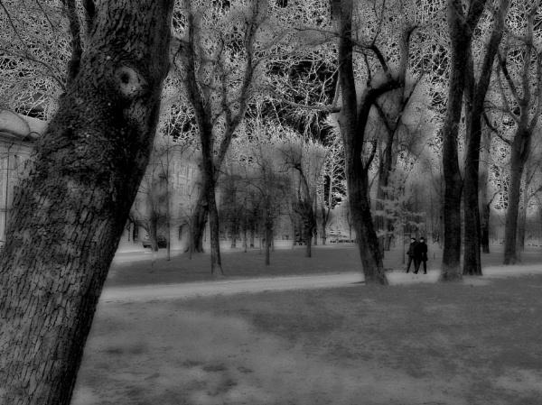 Promenade by Danas