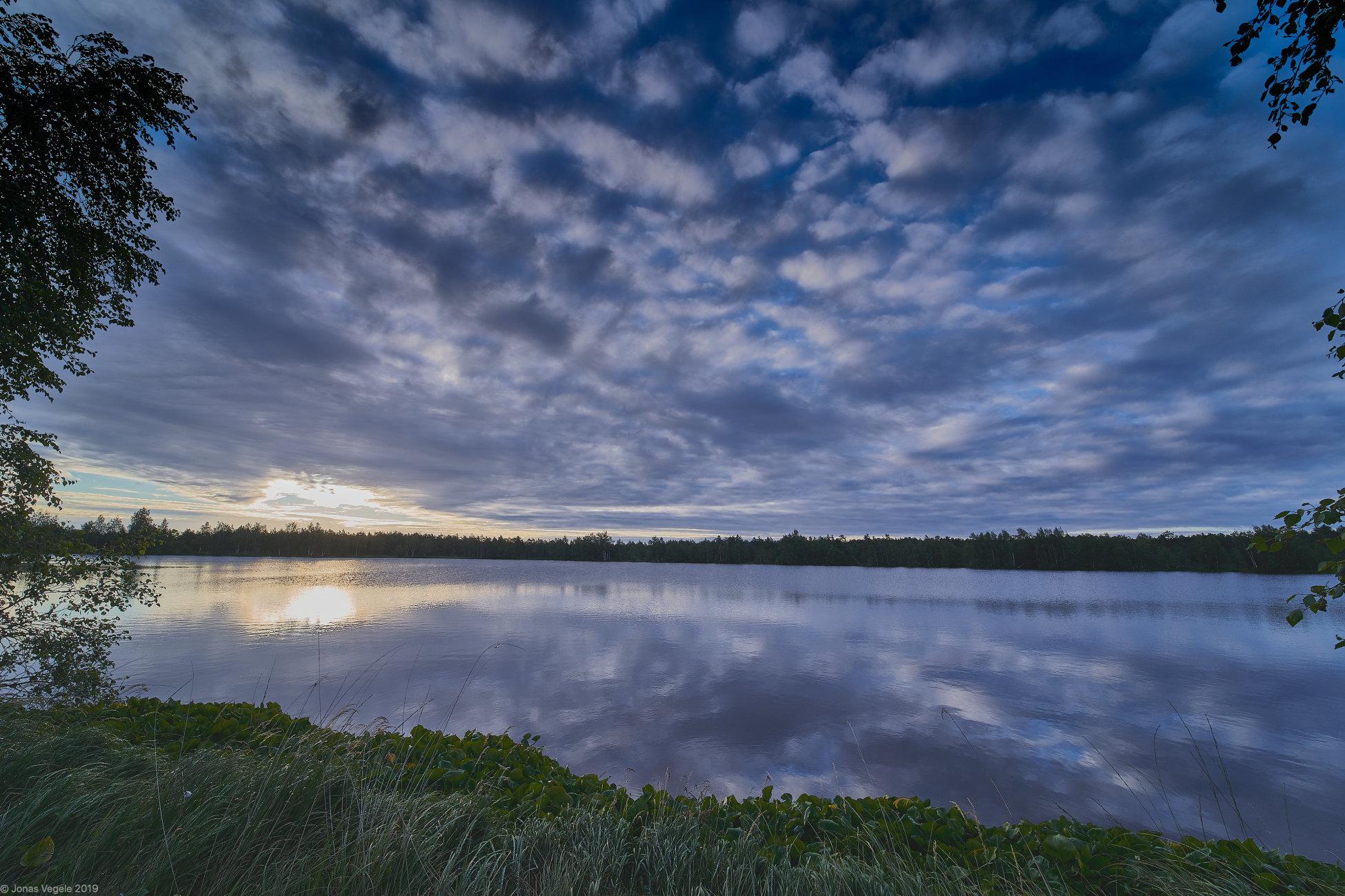 "Lake Miknaiciu in ""Musos tyrelis"" marsh"