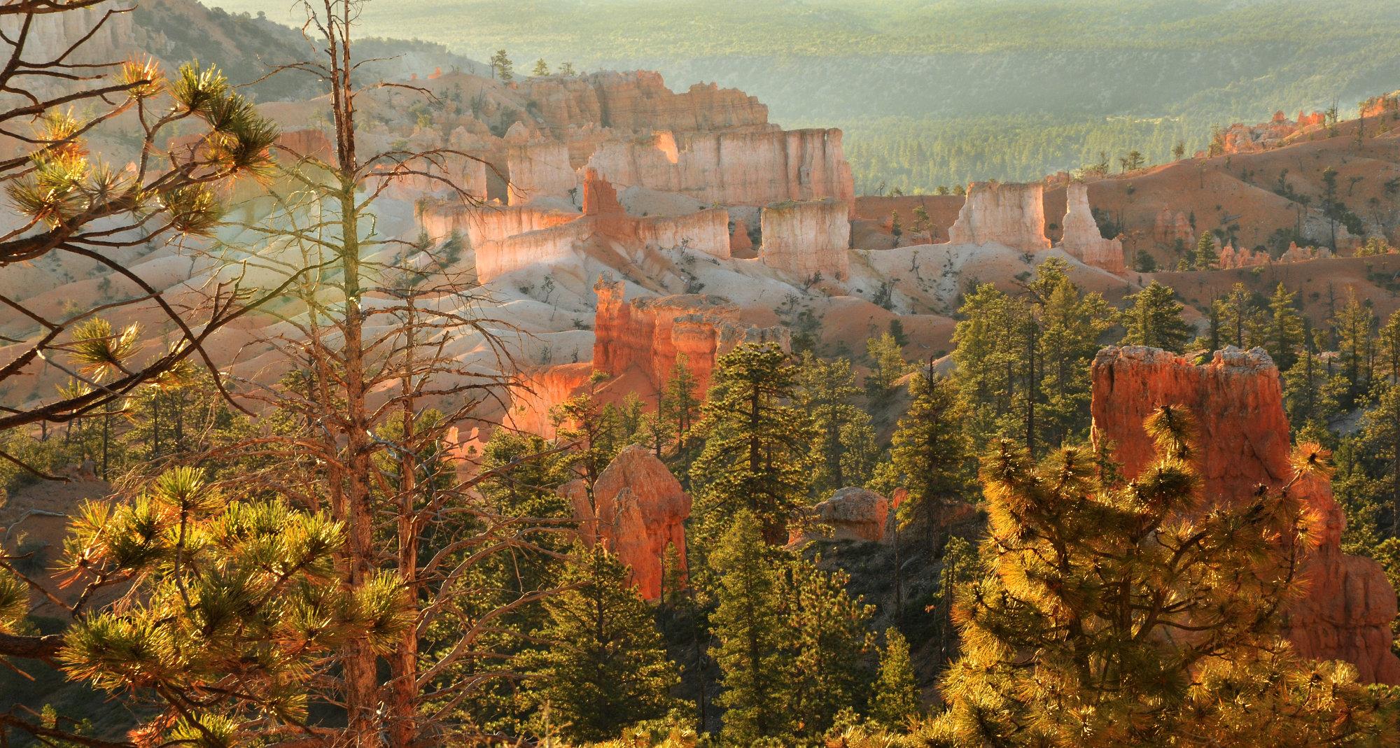 Bryce Canyon sunrise.