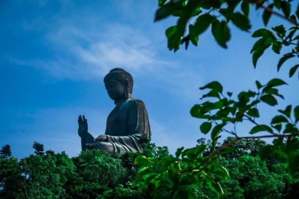 Zen by manicam