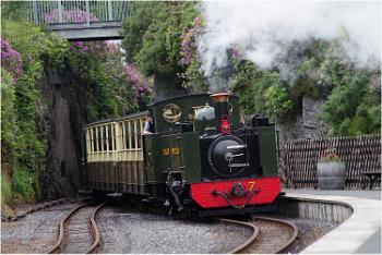 A Little Train in Wales