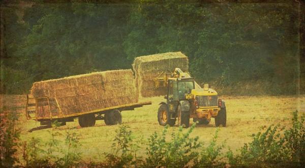 Working The Fields by Minty805