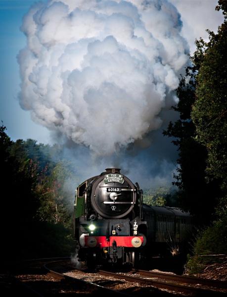 Steam Train by Ron50
