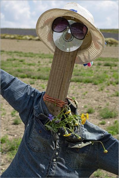 Scarecrow by AlfieK