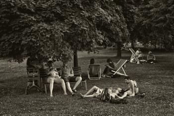 lawn people #2
