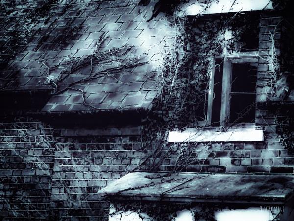 Beautiful abandon by SuziQ67