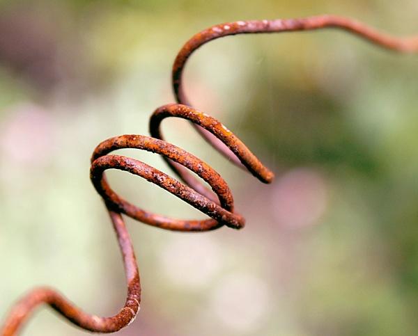 Rusty Loops by helenlinda