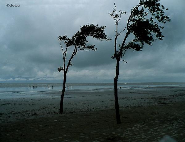 Bakkhali Sea Beach by debu