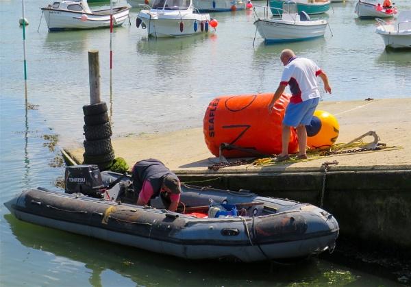 Buoys will be buoys. by ddolfelin