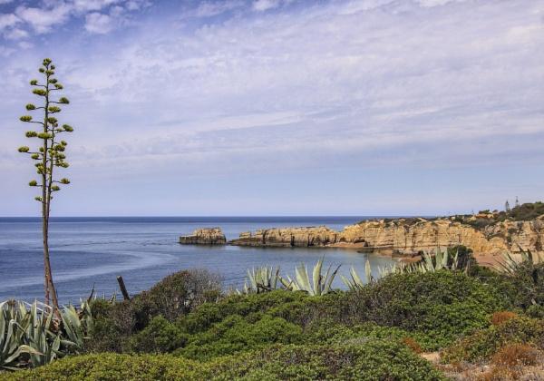 Sesmarias,Algerve,Portugal. by ByHayan