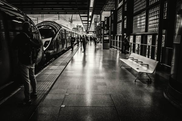 on the platform by mogobiker