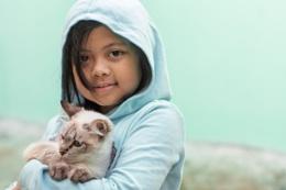 This himalayan Cat