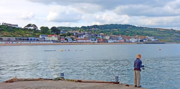 Fishing off The Cobb, Lyme Regis by starckimages