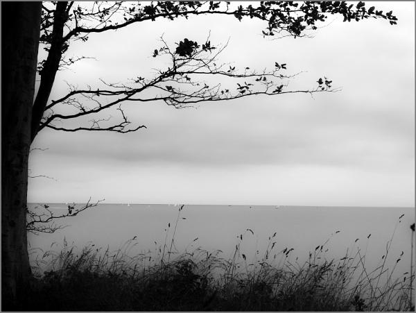 Silent Ocean - Version 2 by kw