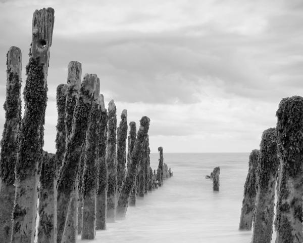 High key moody groynes by PhotoLinda
