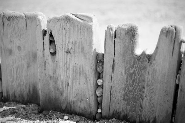 Untitled by PhotoLinda