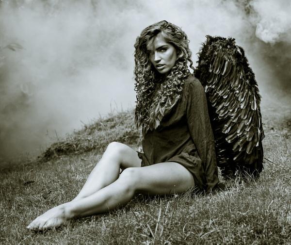 The Fallen Angel by Bogwoppett