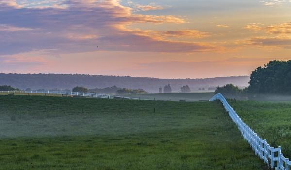 Farmland by TDP43