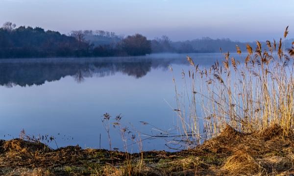 Lake by TDP43
