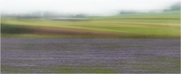 Rural Landscape ICM